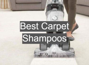 Best Carpet Shampoos