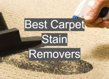 Best Carpet Stain Removers
