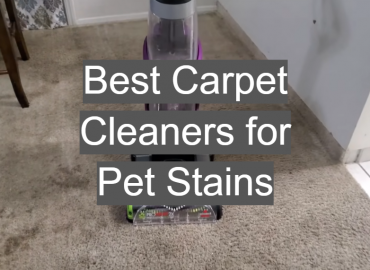 Best Carpet Cleaners for Pet Stains