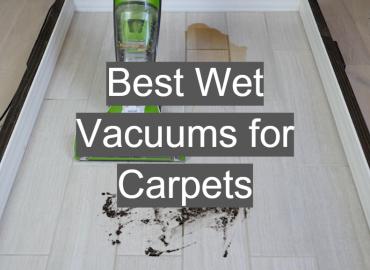 Best Wet Vacuums for Carpets